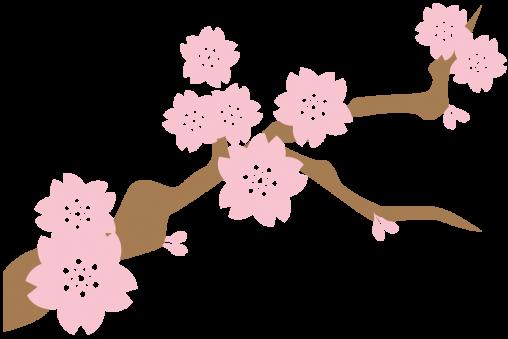 桜のシルエット