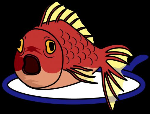 絶対絶命の金魚