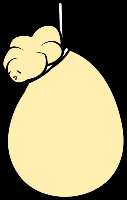 カチョカバロ